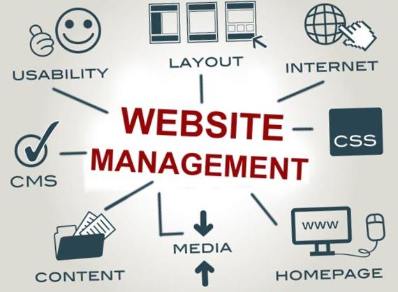 managewp free download