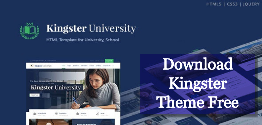 Download Kingster Theme Free