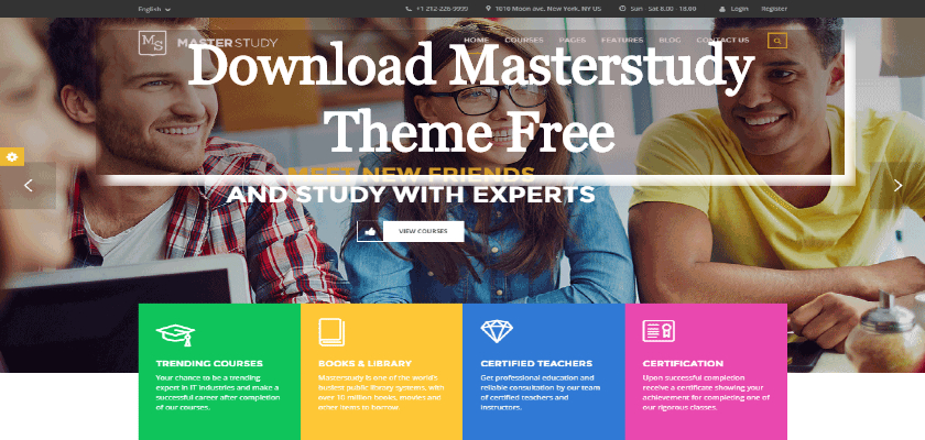 Download Masterstudy Theme Free