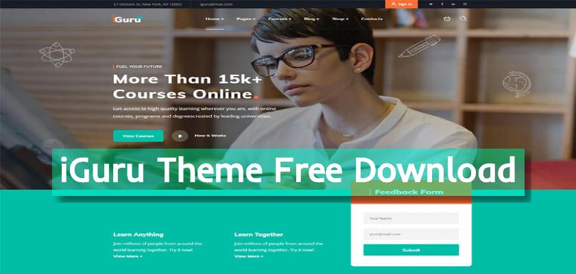 iGuru Theme Free Download