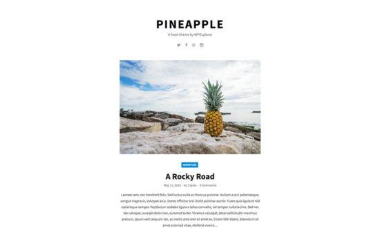 Pineapple Theme Download Free