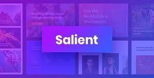 Download Salient Theme Free