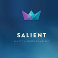 Salient Theme Logo