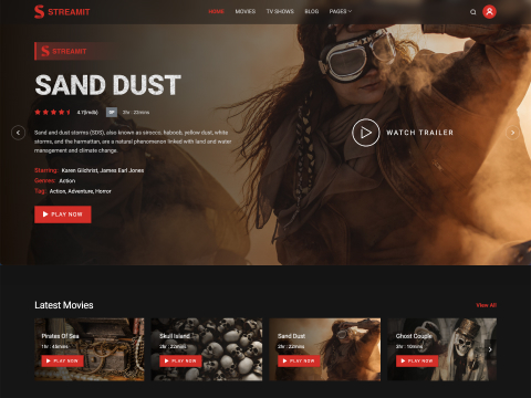 Streamit - Video Streaming WordPress Theme